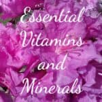 Essential vitamins and minerals for adrenal fatigue.