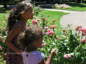 Explore the parks. Two girls looking at flowers in a park. Summer fun.