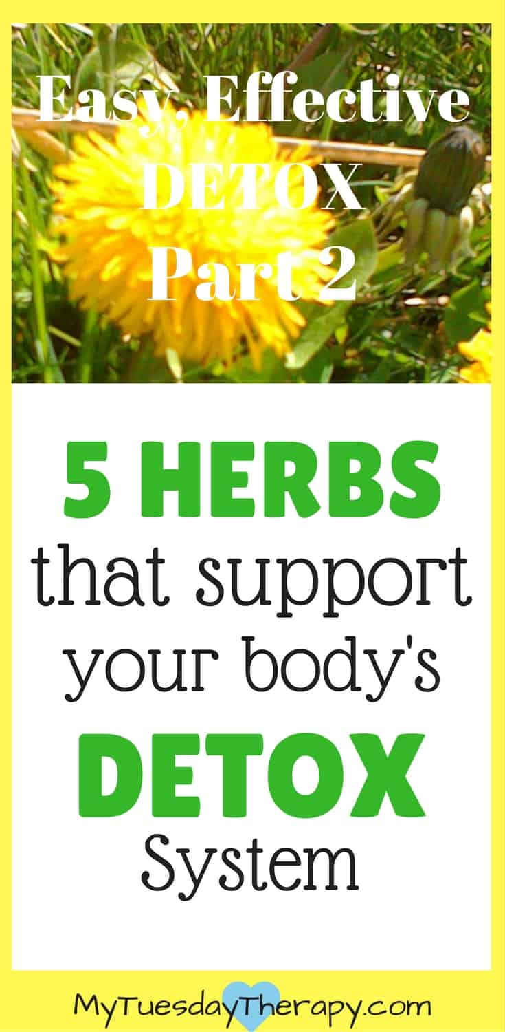 Enjoy these herbs for a natural detox. | An easy way to support your detox system. | #detox #herbs #immunesystem #chronicillness #adrenalfatigue #naturalremedies