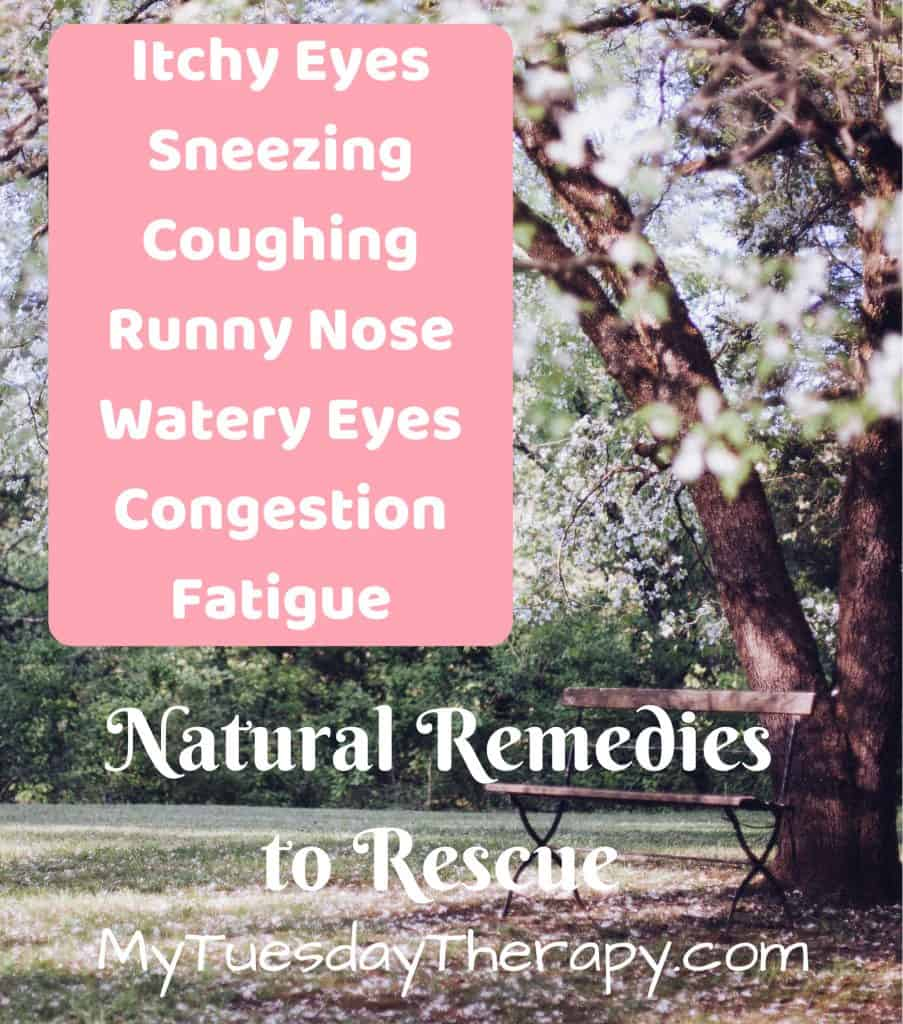 Allergy Symptoms: Itchy Eyes, sneezing, coughing, runny nose, water eyes, congestion, fatigue. Natural Remedies to Rescue! (image: a bench under a blossoming tree) MyTuesdayTherapy.com