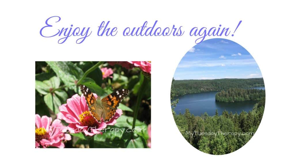 Enjoy the outdoors again! A butterfly on a flower. A lake and trees.