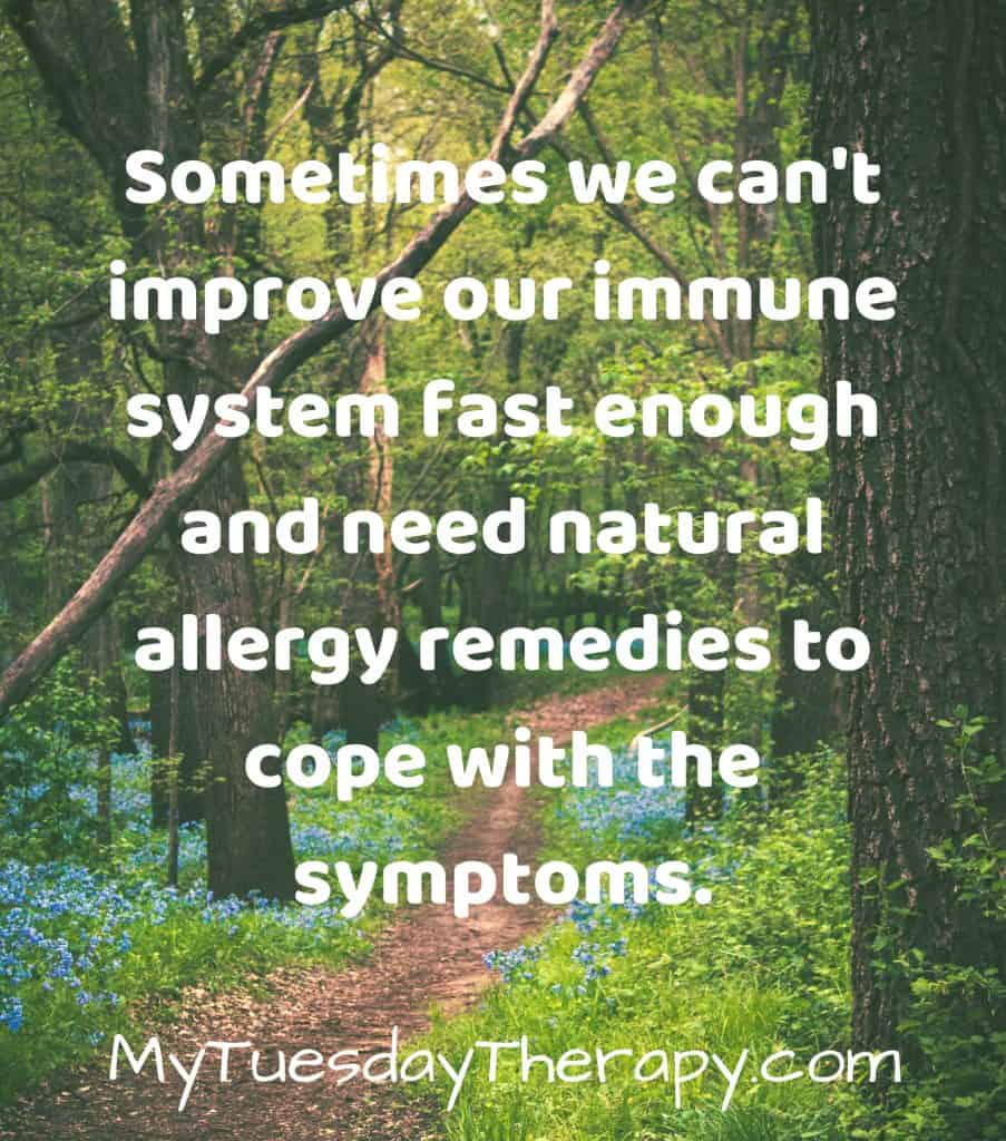 Sometimes we can't improve our immune system fast enough and need natural allergy remedies to cope with the symptoms. (image: a path in a sunny forest)
