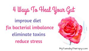 Wayt to Heal Your Gut. Improve diet, fix bacterial imbalance, eliminate toxins, reduce stress | A rose |