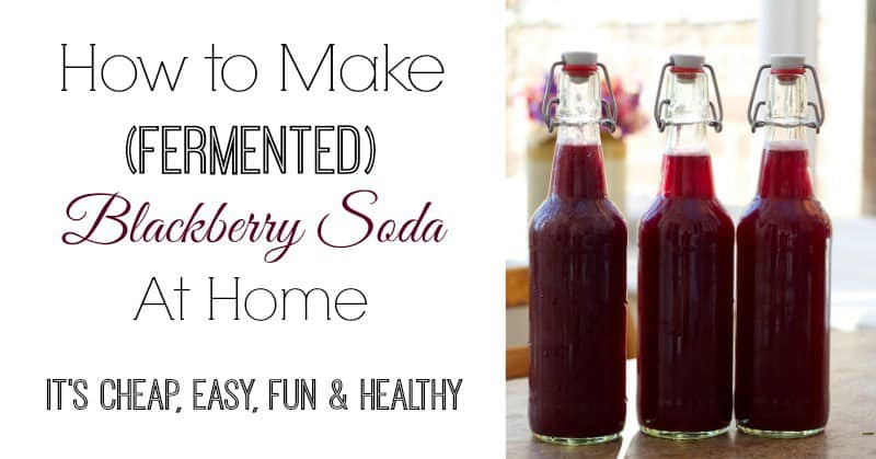 Fermented Blackberry soda. Image and recipe: And Here We Are