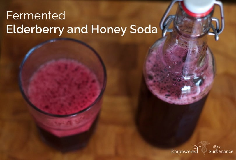 Fermented Elderberry and Honey Soda. Image and Recipe: Empowered Sustenance.