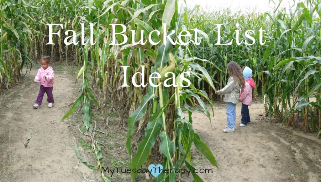 Fall Bucket List Ideas. Have fun in the corn maze.
