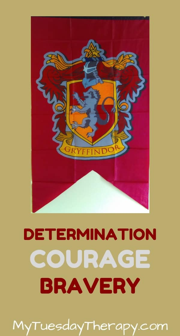 Gryffindor Values: Determination, Courage, Bravery.