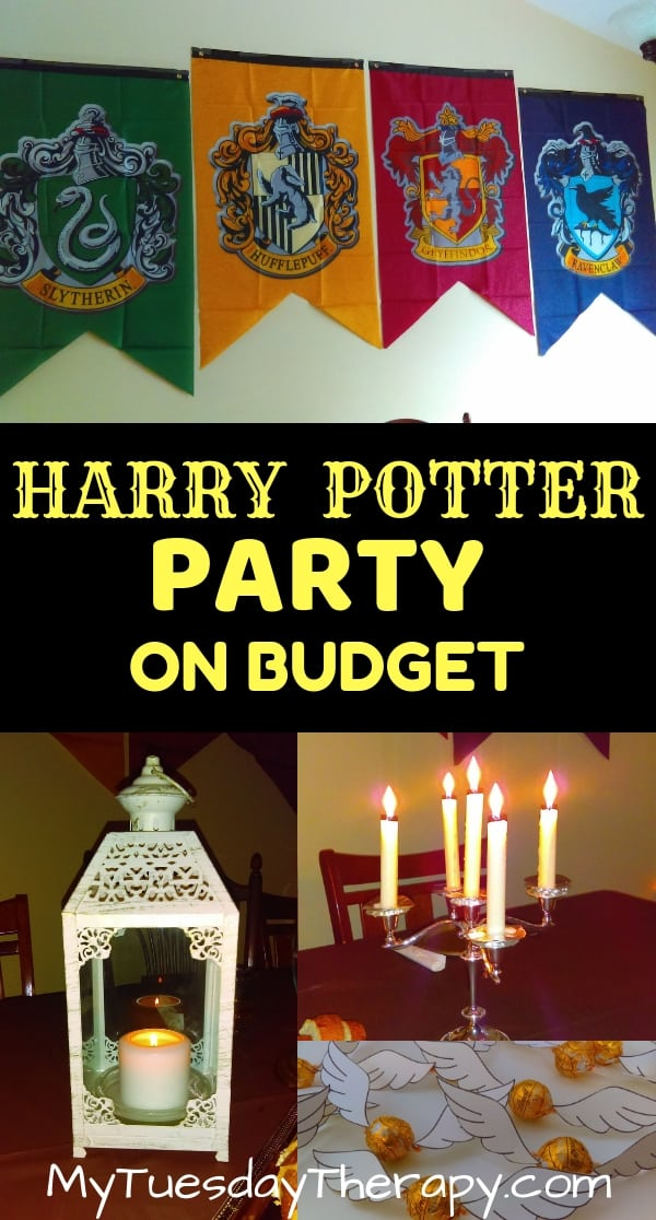 Harry Potter Party On Budget
