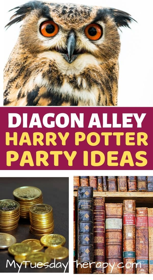 Diagon Alley. Owl Emporium. Gringotts Bank.