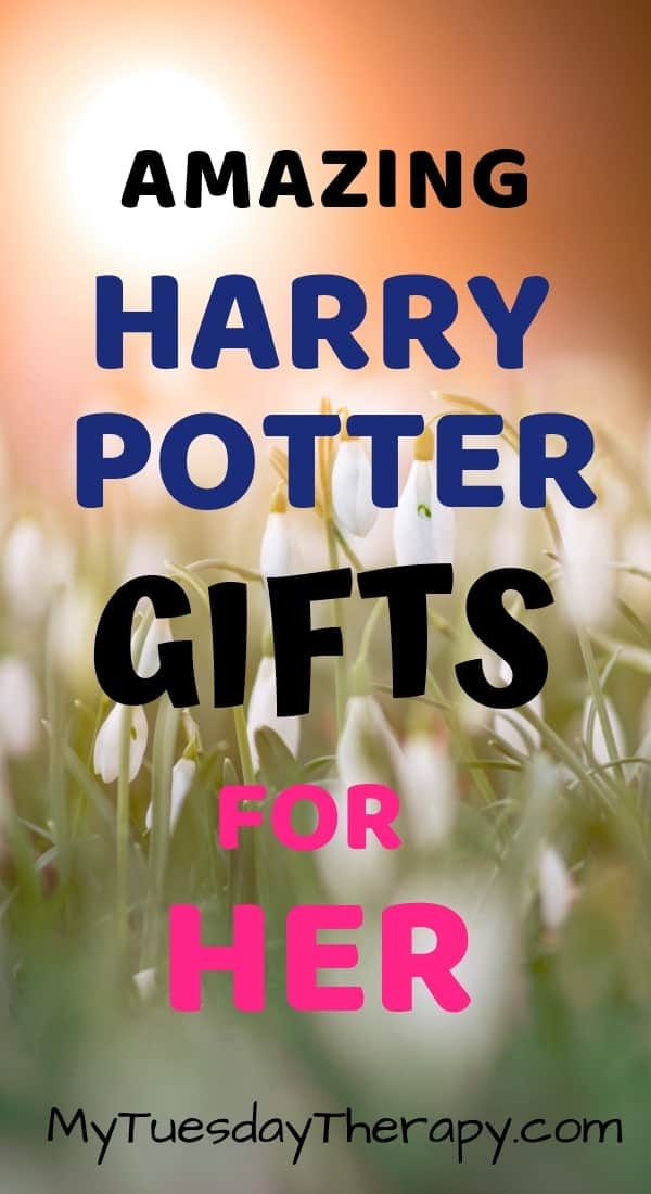 Amazing Harry Potter Gifts for Her.
