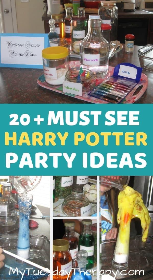 Harry Potter Potions Class.