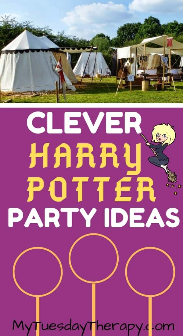 Harry Potter Party Ideas. Quidditch World Cup .