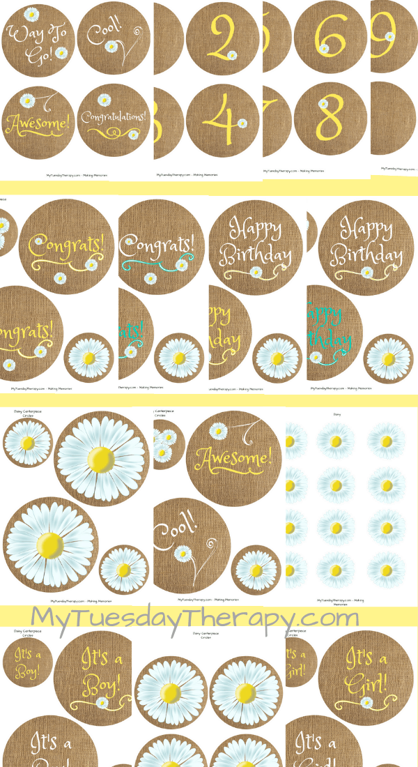 Daisy Centerpiece Circles for Summer Party