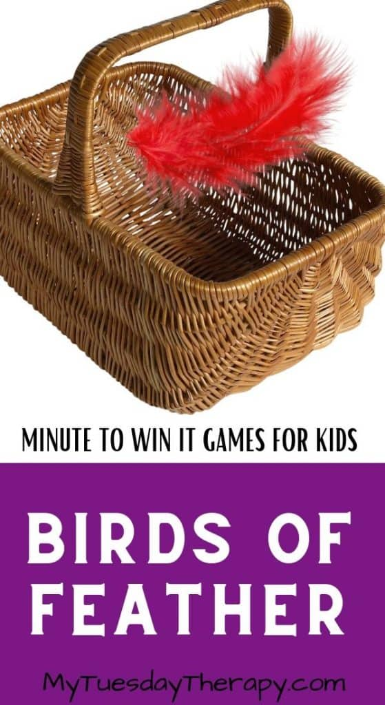 Minute to Win It Game for Kids: Birds of Feather