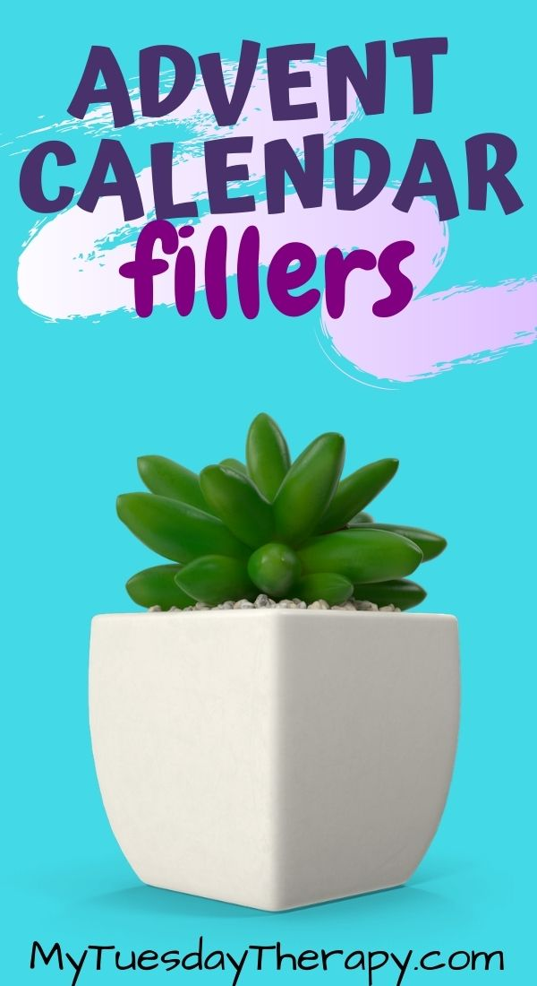 Advent calendar fillers for boys and girls: succulents