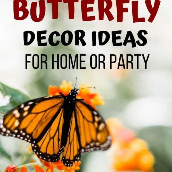 Easy butterfly decor ideas for home or summer party.