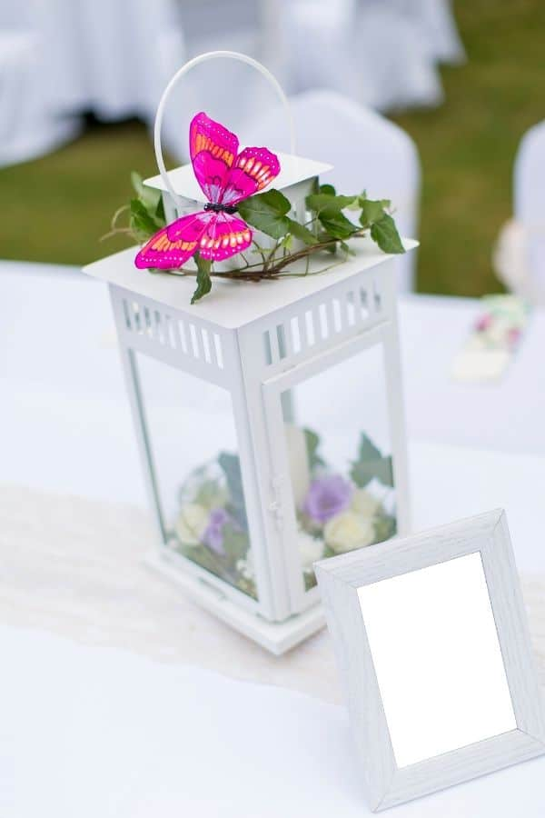 Butterfly lantern decoration idea for summer party.