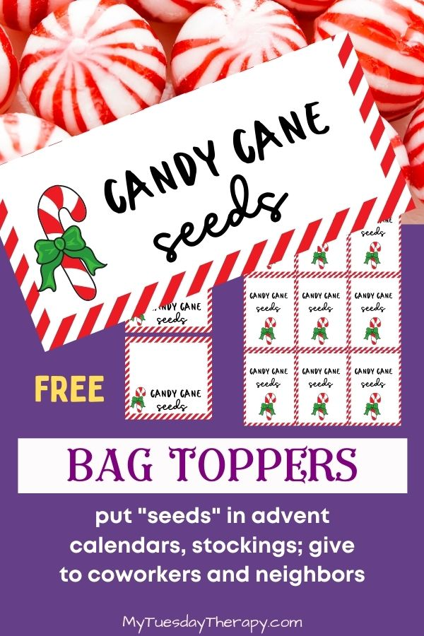 Candy Cane Seeds Bag Topper, free printable