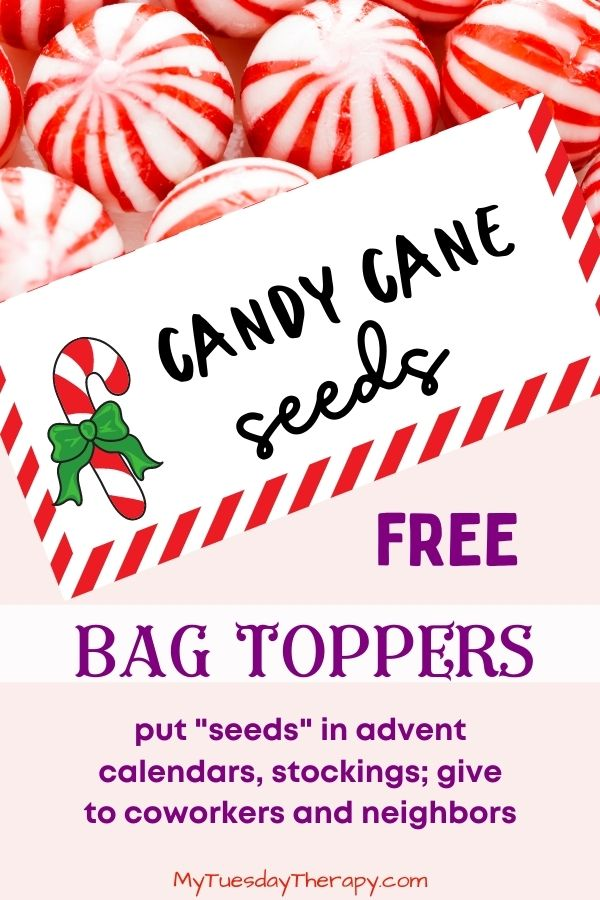 Candy Cane Seeds Bag Topper (free printable)