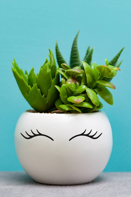 Summer Crafts for Teenage Girls: flower pot makeover: flower pot with eyelashes.
